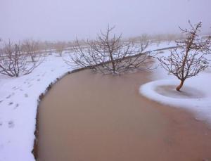 24_ae_snow3_5